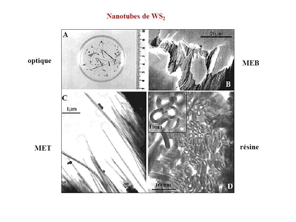 Nanotubes de WS2 optique MEB MET résine