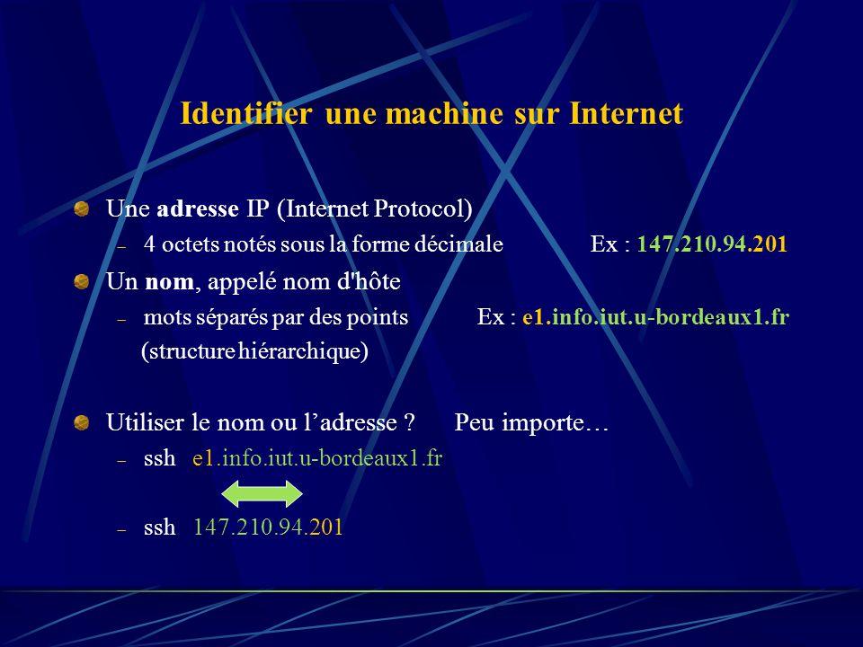Identifier une machine sur Internet