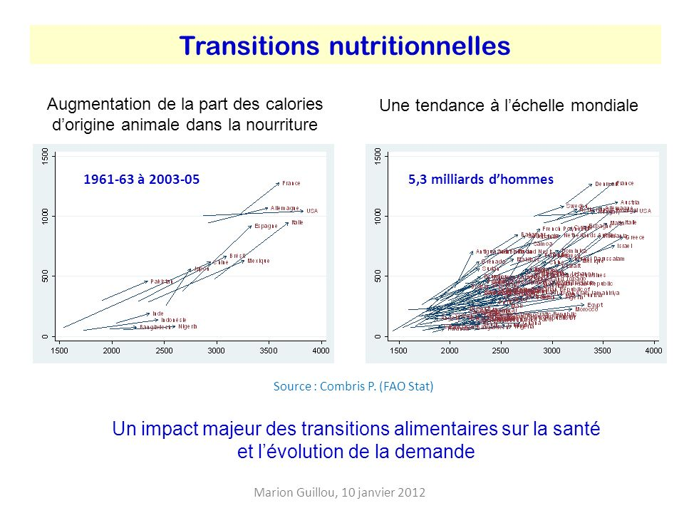 Transitions nutritionnelles