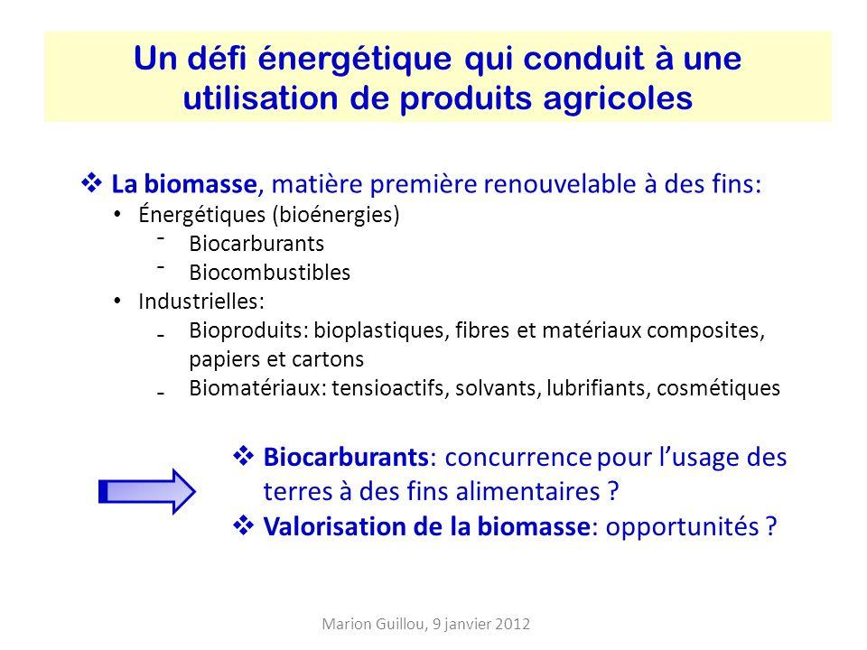 Un défi énergétique qui conduit à une utilisation de produits agricoles