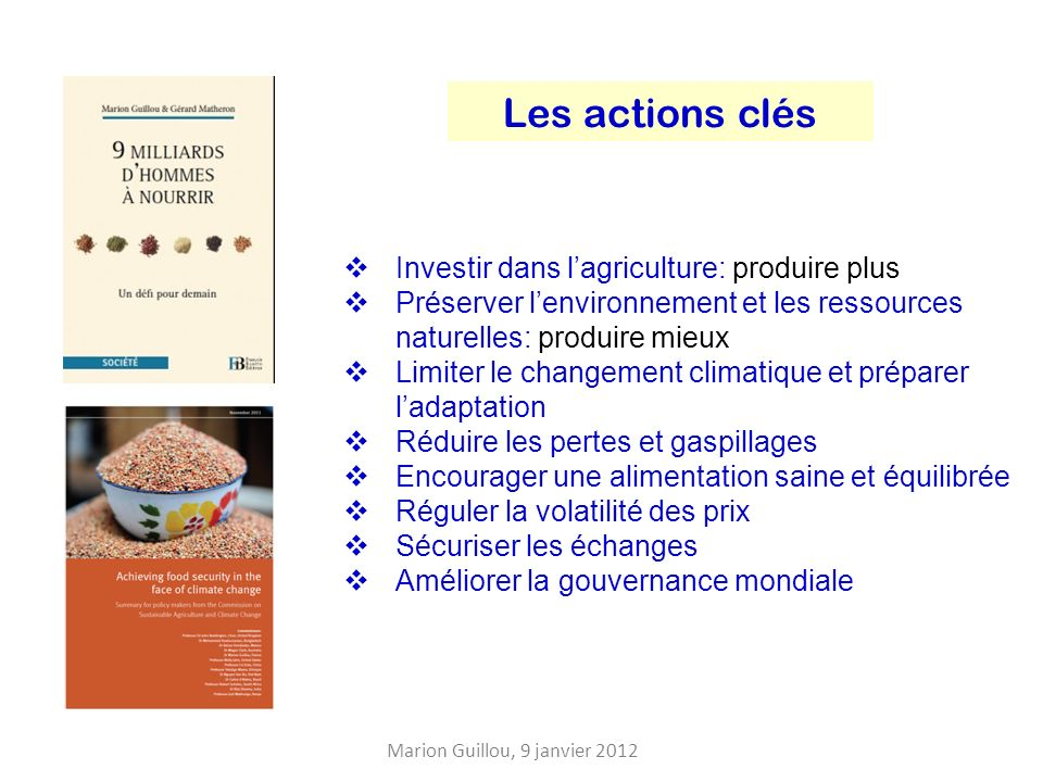 Les actions clés Investir dans l'agriculture: produire plus