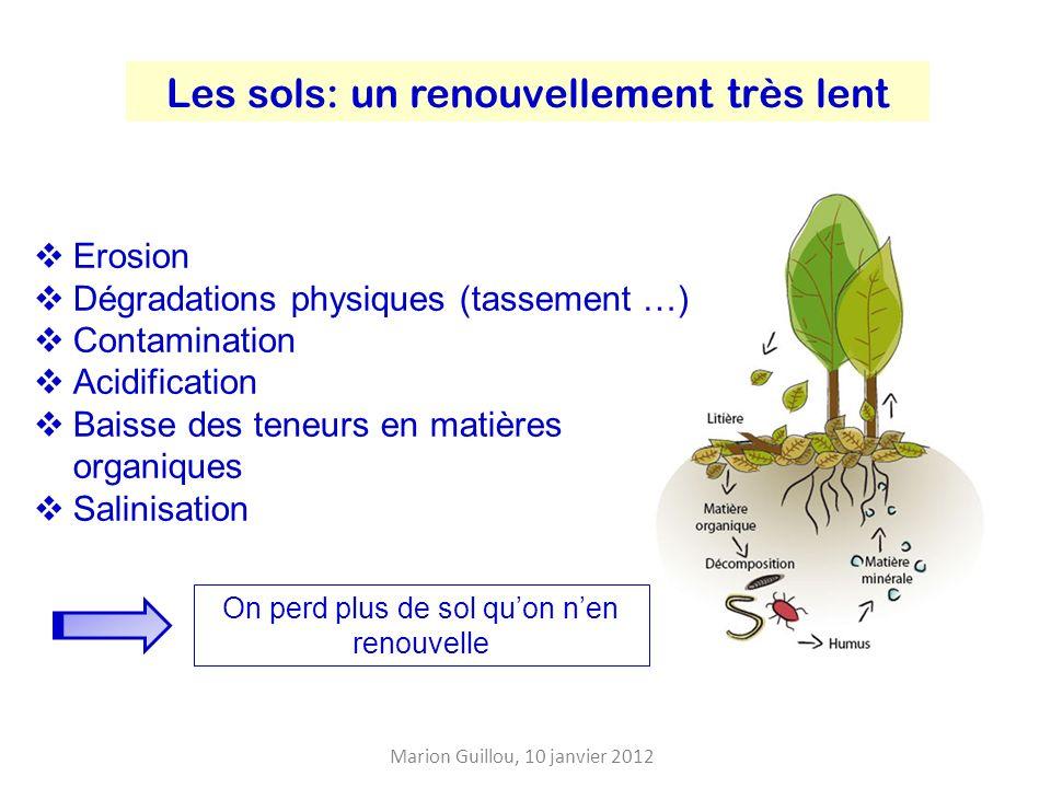 Les sols: un renouvellement très lent