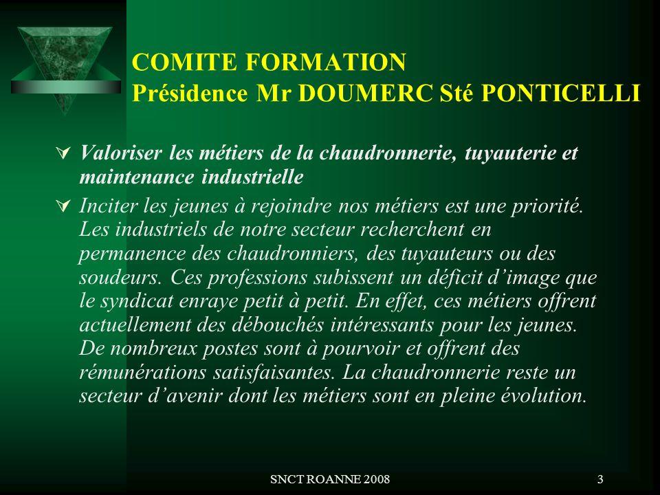 COMITE FORMATION Présidence Mr DOUMERC Sté PONTICELLI