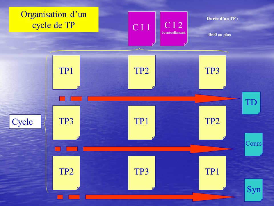 Organisation d'un cycle de TP