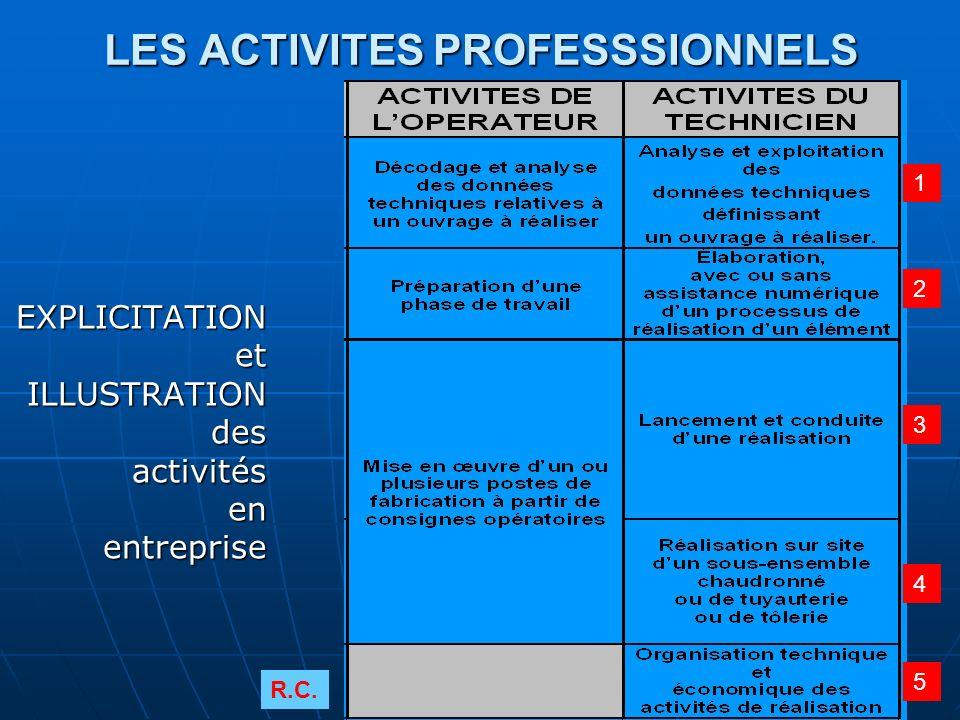 LES ACTIVITES PROFESSSIONNELS