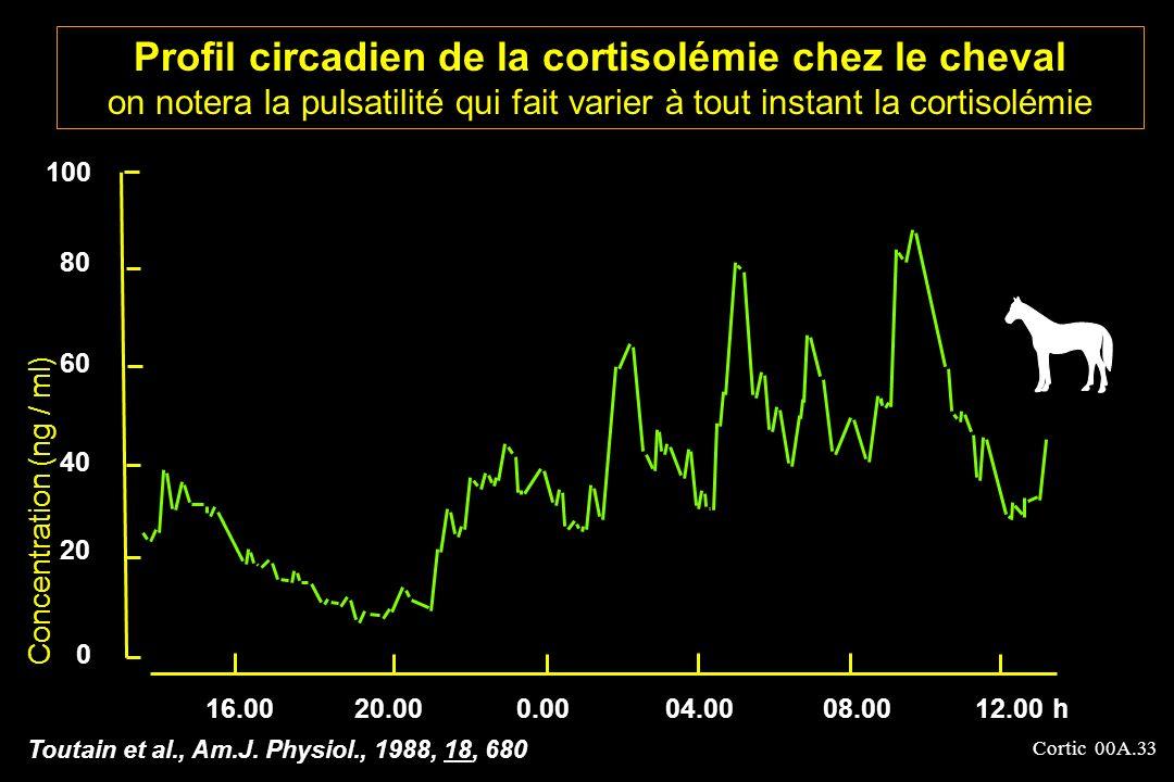 Profil circadien de la cortisolémie chez le cheval