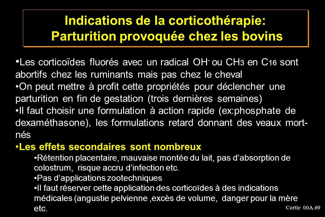 Indications de la corticothérapie: Parturition provoquée chez les bovins