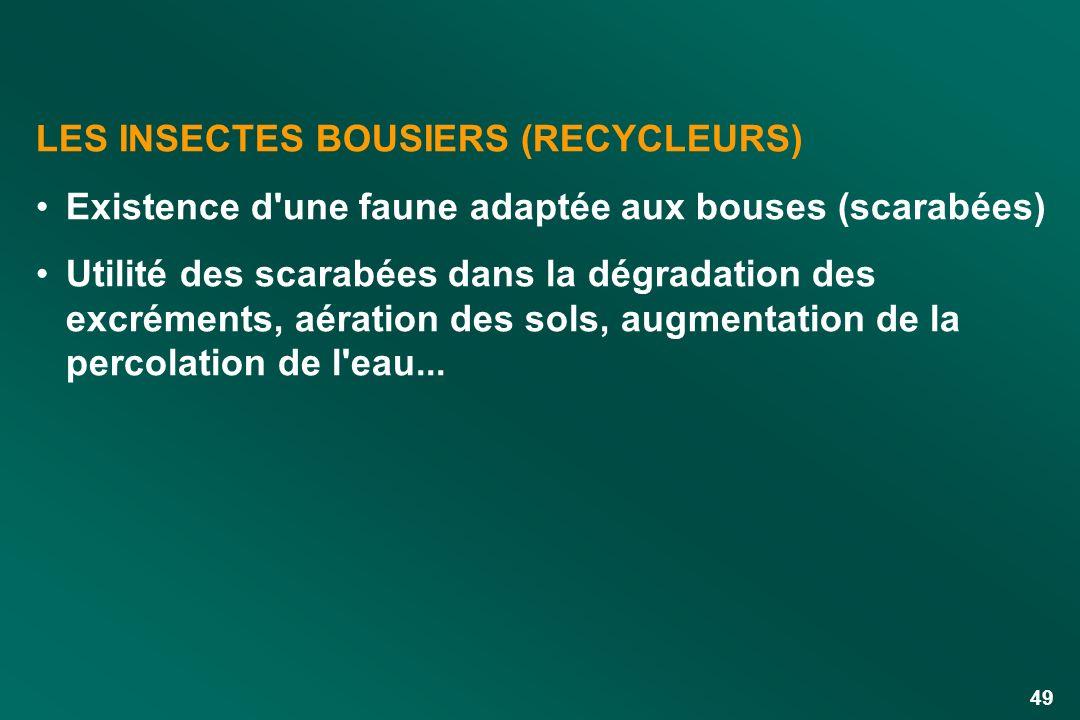 LES INSECTES BOUSIERS (RECYCLEURS)