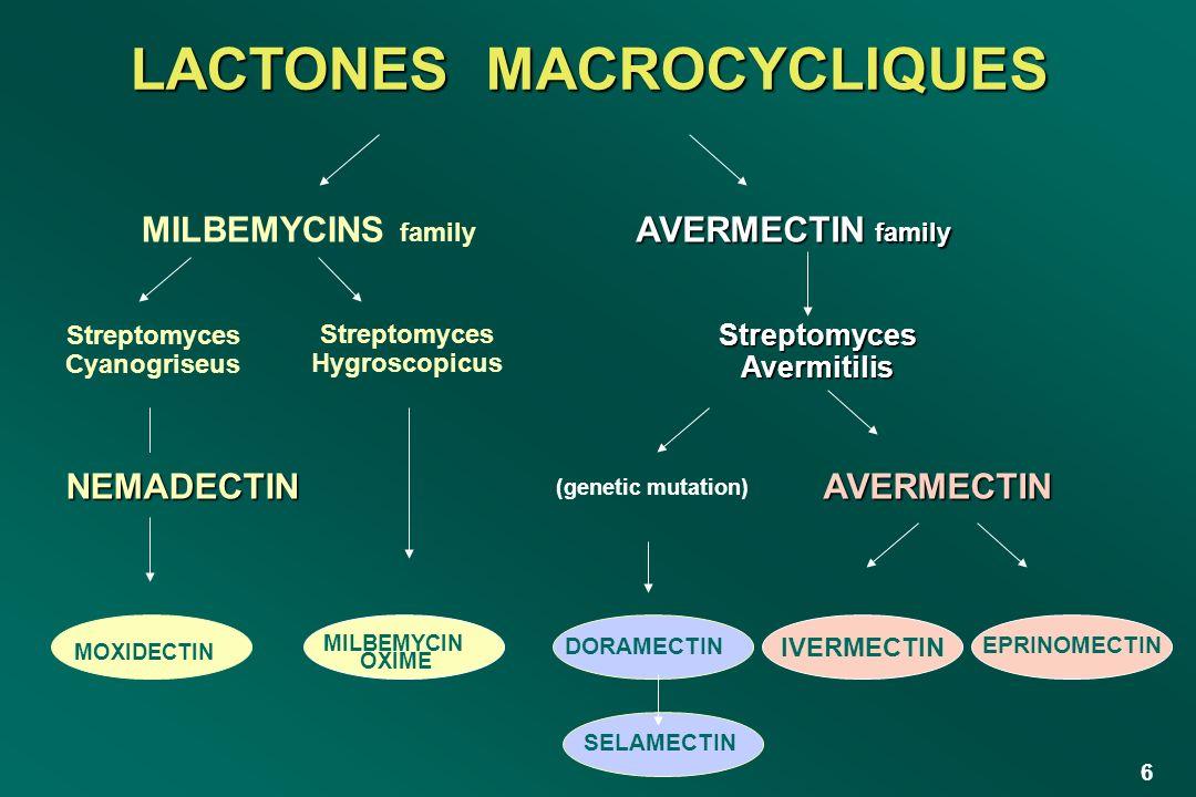 LACTONES MACROCYCLIQUES