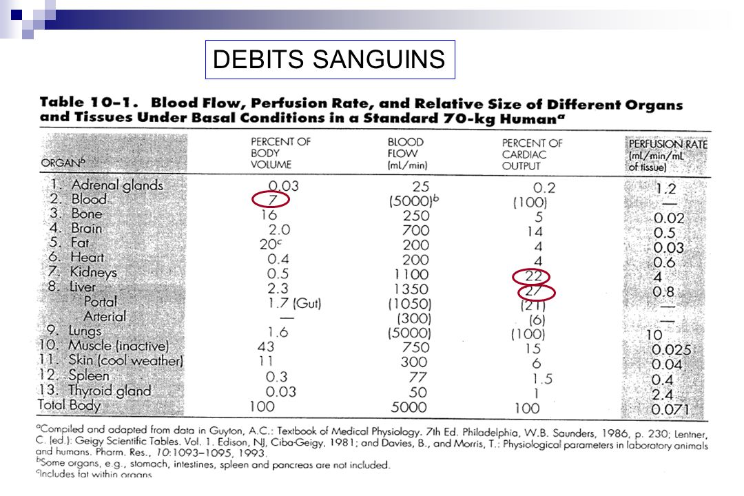 DEBITS SANGUINS
