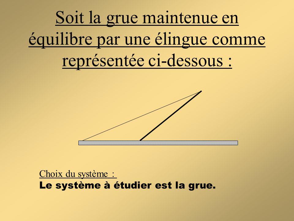 Soit la grue maintenue en équilibre par une élingue comme représentée ci-dessous :