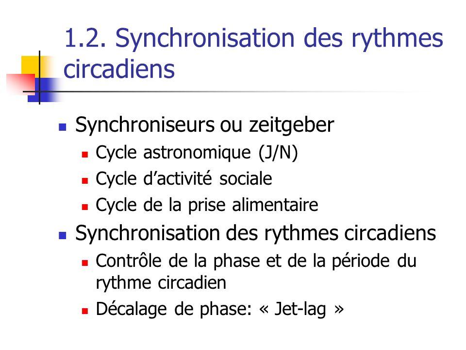 1.2. Synchronisation des rythmes circadiens