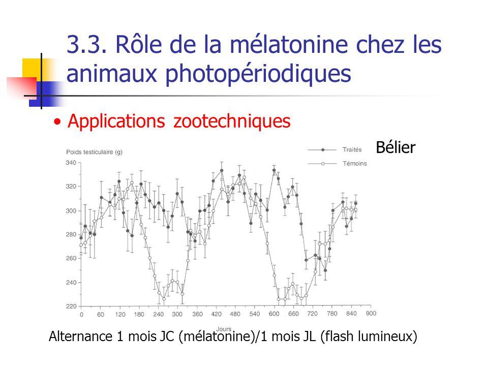 3.3. Rôle de la mélatonine chez les animaux photopériodiques