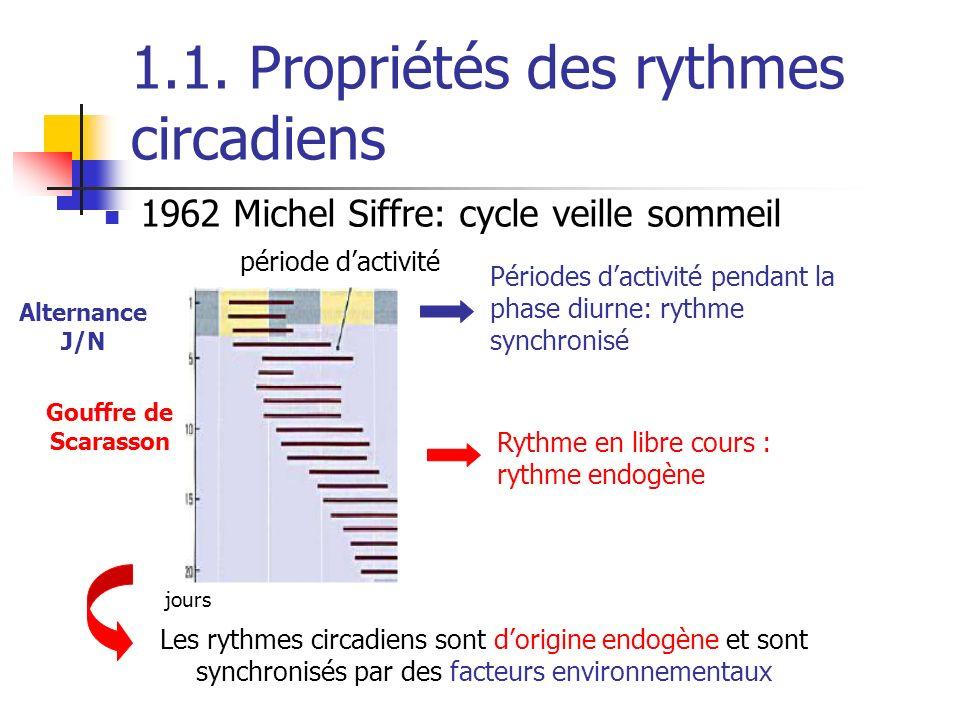 1.1. Propriétés des rythmes circadiens