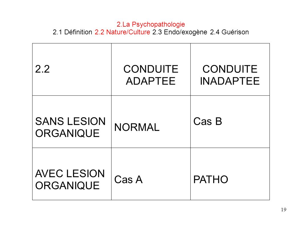 2.2 CONDUITE ADAPTEE INADAPTEE SANS LESION ORGANIQUE NORMAL Cas B