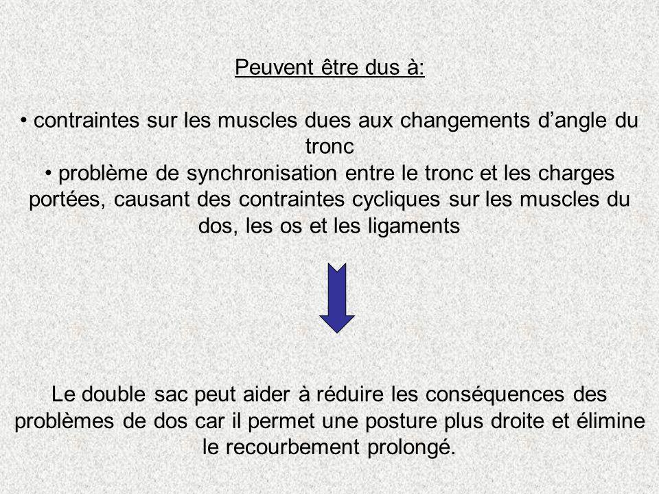 contraintes sur les muscles dues aux changements d'angle du tronc