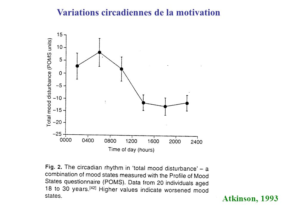 Variations circadiennes de la motivation