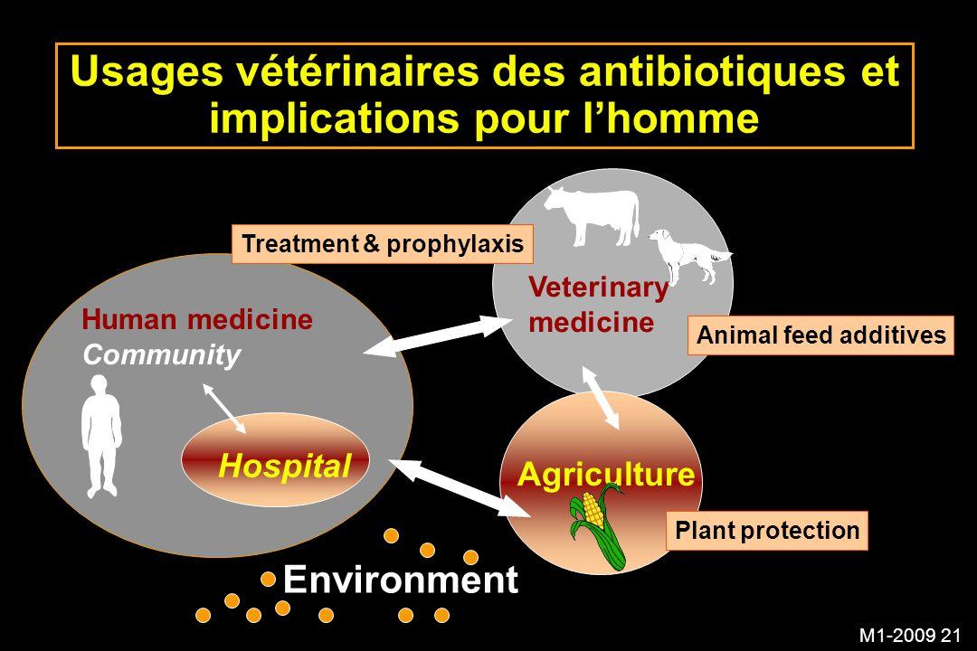 Usages vétérinaires des antibiotiques et implications pour l'homme