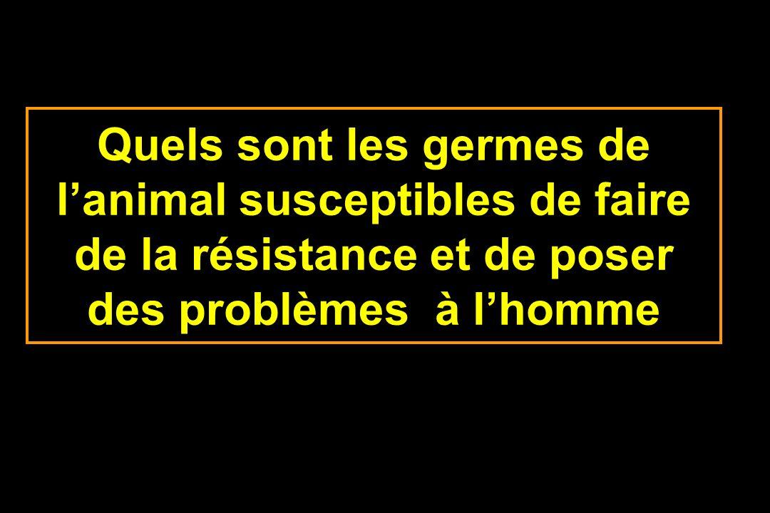 Quels sont les germes de l'animal susceptibles de faire de la résistance et de poser des problèmes à l'homme