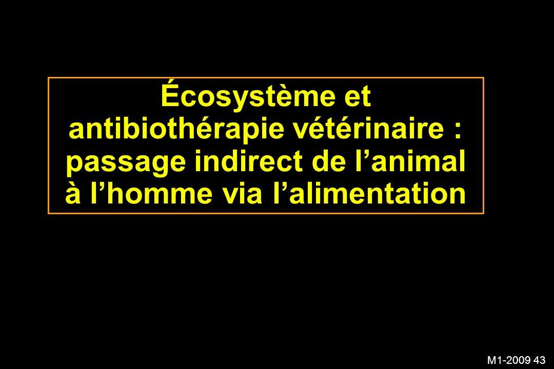 Écosystème et antibiothérapie vétérinaire : passage indirect de l'animal à l'homme via l'alimentation