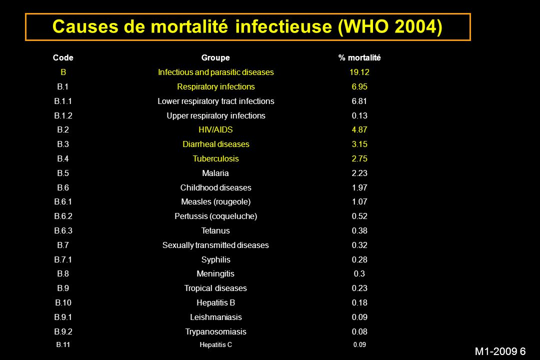 Causes de mortalité infectieuse (WHO 2004)