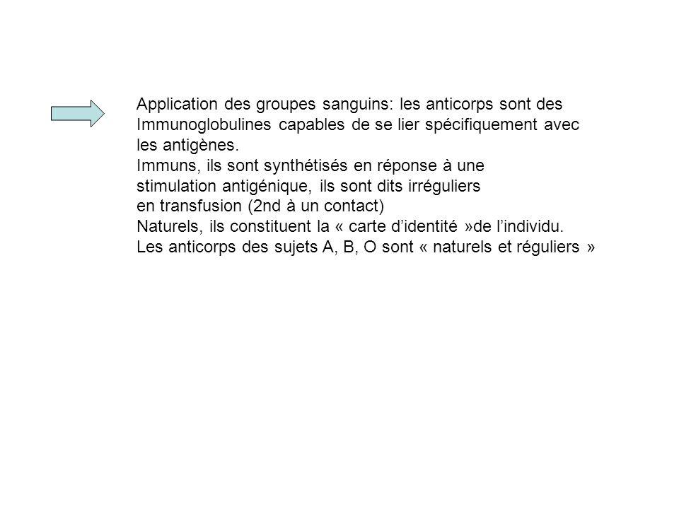 Application des groupes sanguins: les anticorps sont des