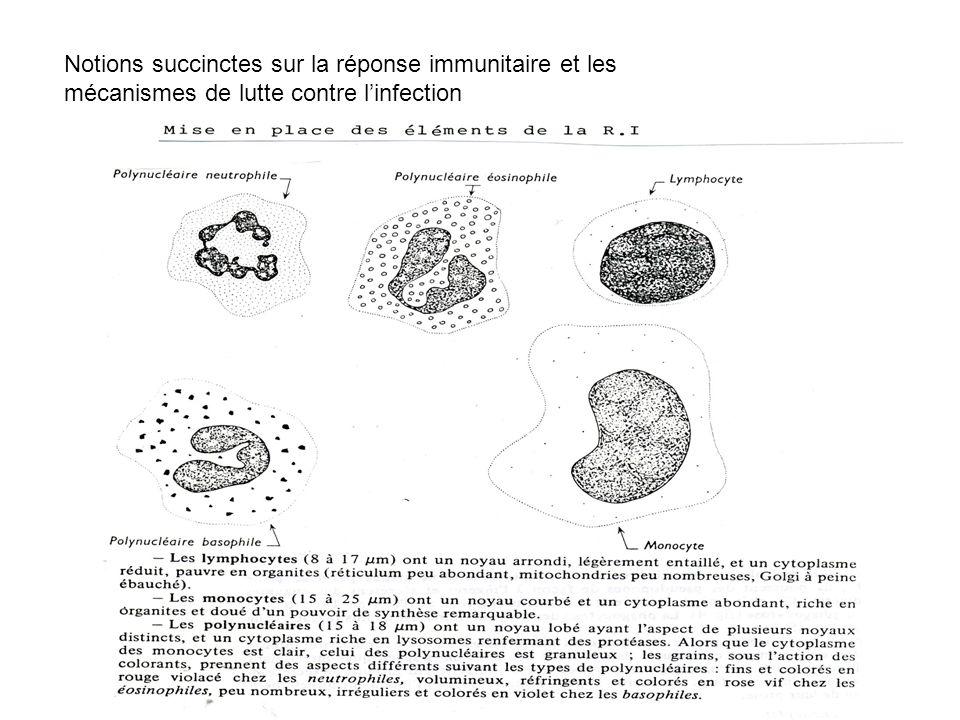 Notions succinctes sur la réponse immunitaire et les