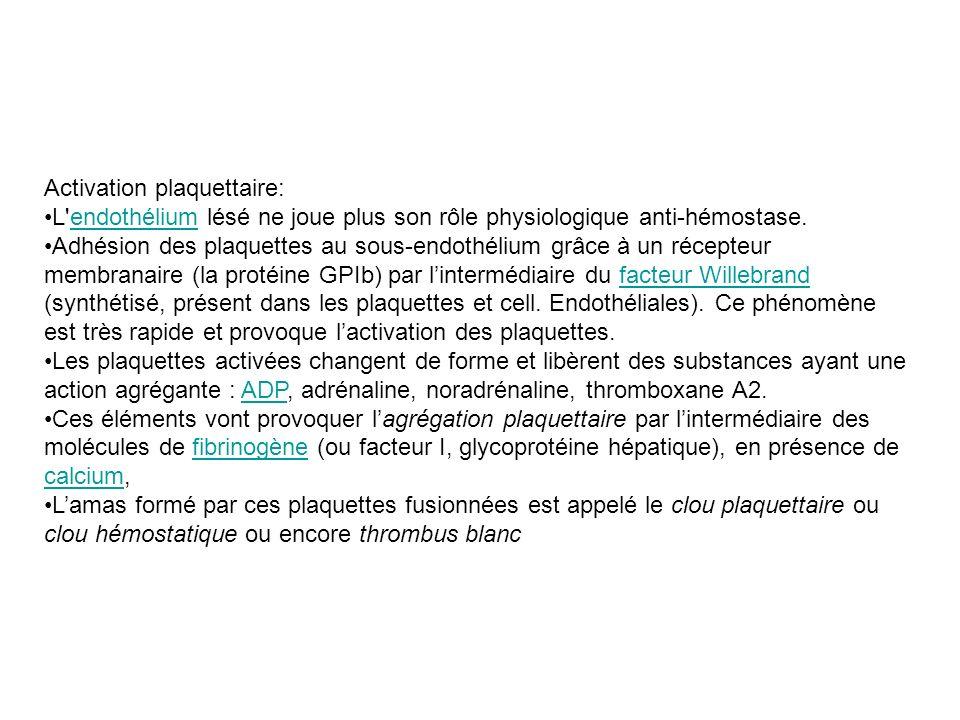 Activation plaquettaire: