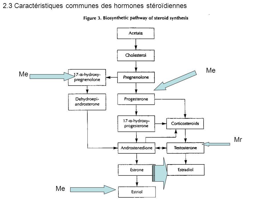 2.3 Caractéristiques communes des hormones stéroïdiennes