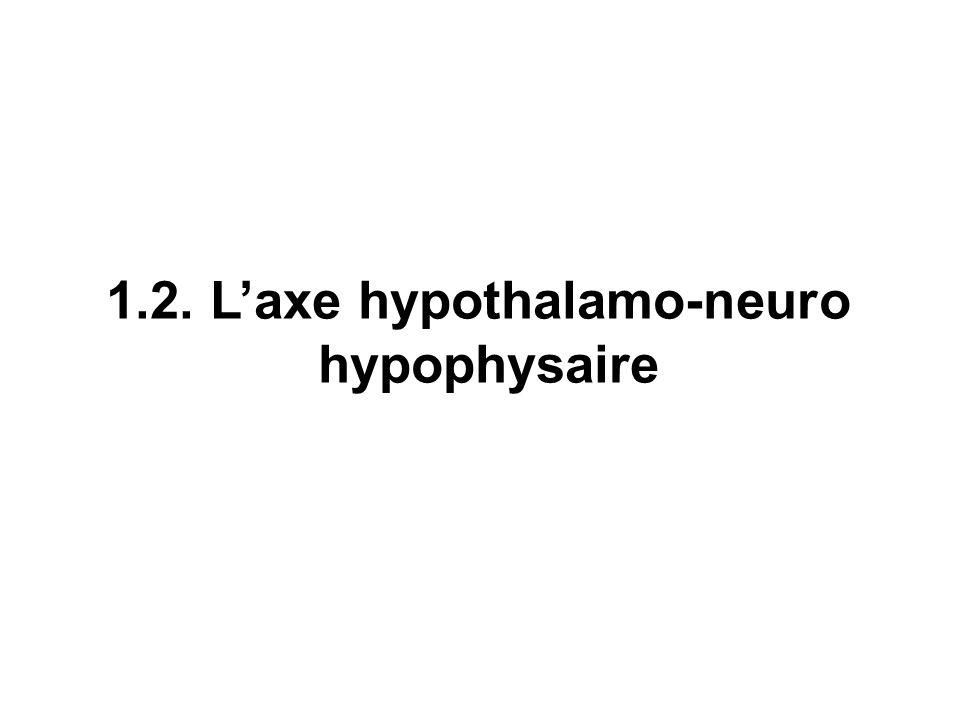 1.2. L'axe hypothalamo-neuro