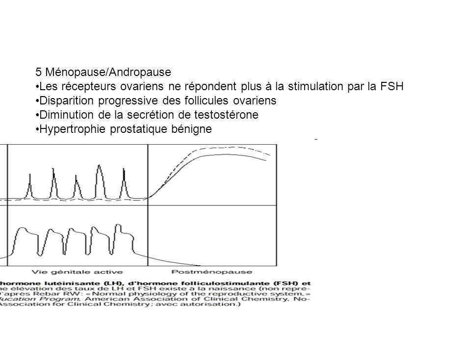 5 Ménopause/Andropause
