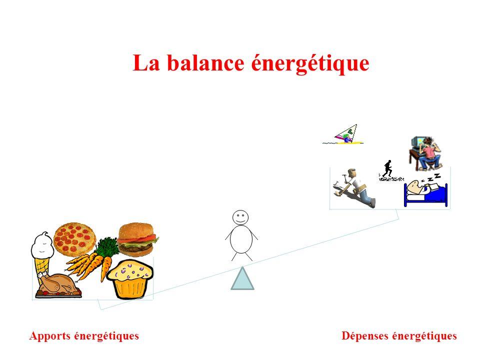 La balance énergétique