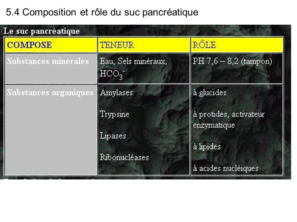 5.4 Composition et rôle du suc pancréatique