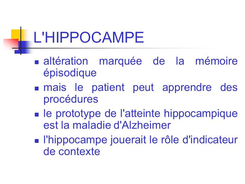 L HIPPOCAMPE altération marquée de la mémoire épisodique