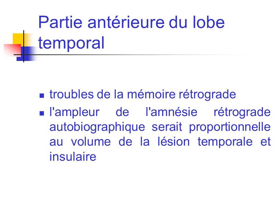 Partie antérieure du lobe temporal