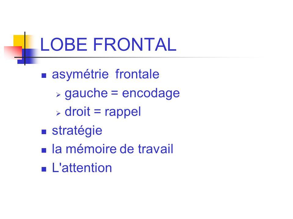 LOBE FRONTAL asymétrie frontale gauche = encodage droit = rappel