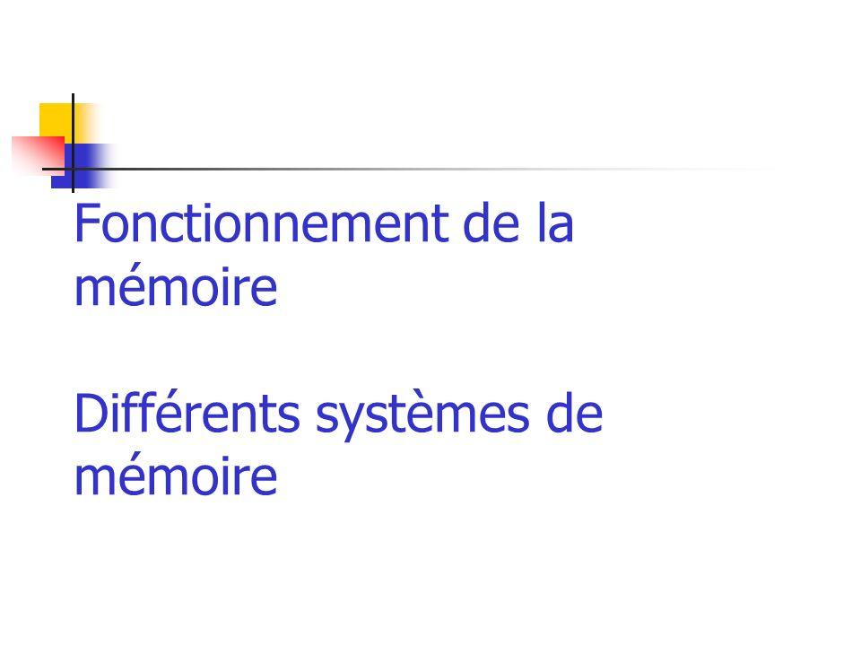 Fonctionnement de la mémoire Différents systèmes de mémoire