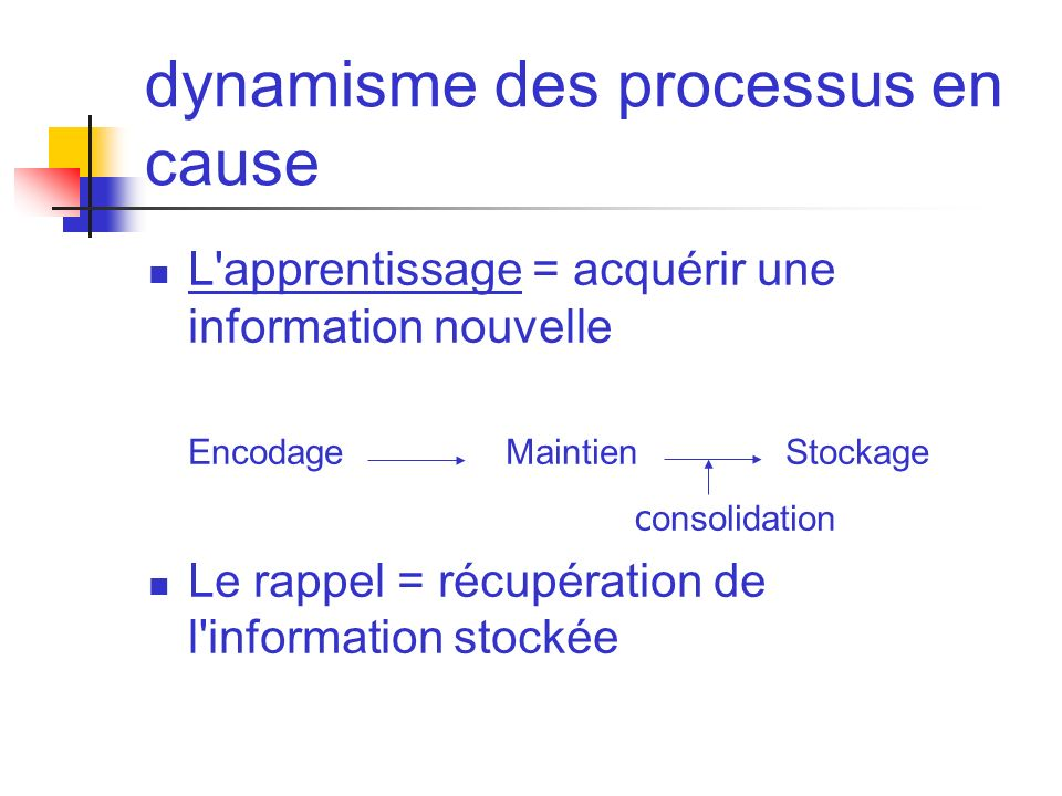 dynamisme des processus en cause