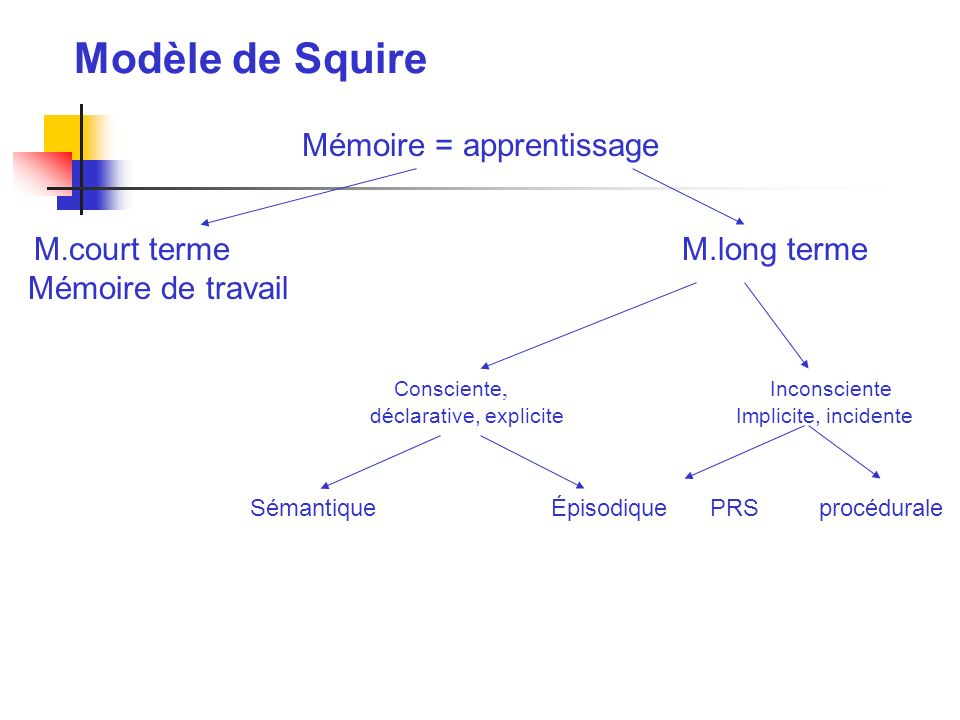 Mémoire = apprentissage