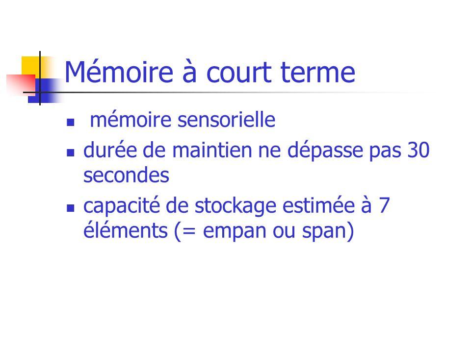 Mémoire à court terme mémoire sensorielle