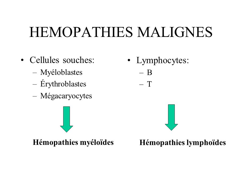 HEMOPATHIES MALIGNES Cellules souches: Lymphocytes: Myéloblastes B
