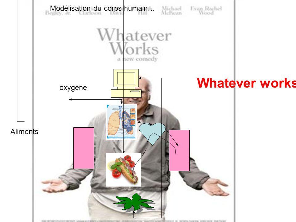 Modélisation du corps humain…