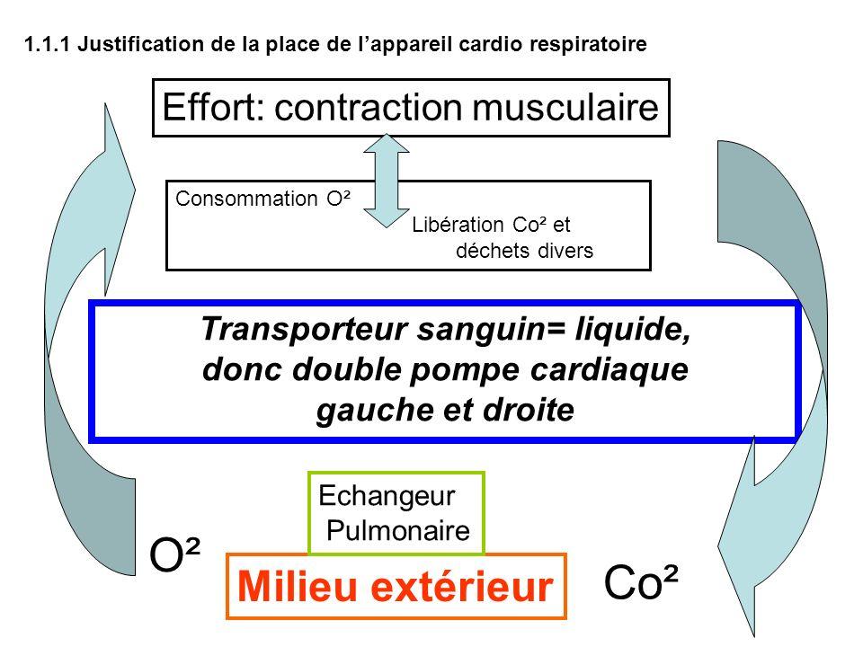 Transporteur sanguin= liquide, donc double pompe cardiaque