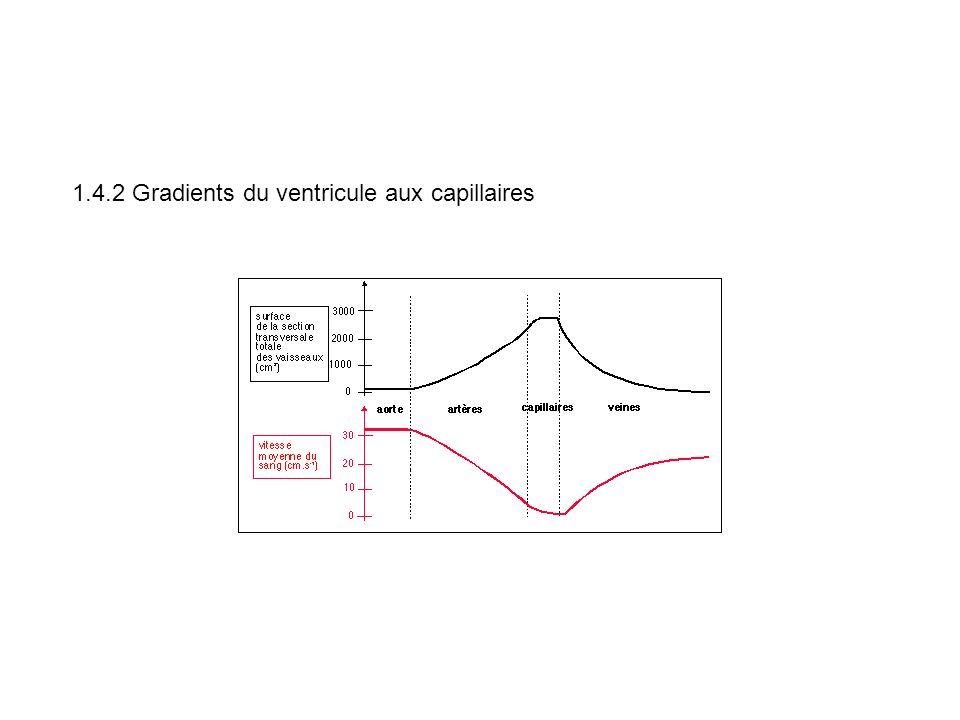 1.4.2 Gradients du ventricule aux capillaires