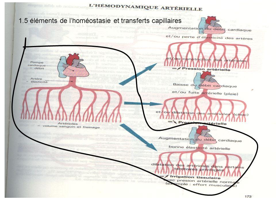 1.5 éléments de l'homéostasie et transferts capillaires