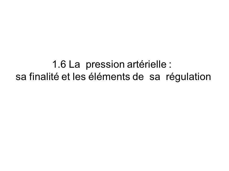 1.6 La pression artérielle :