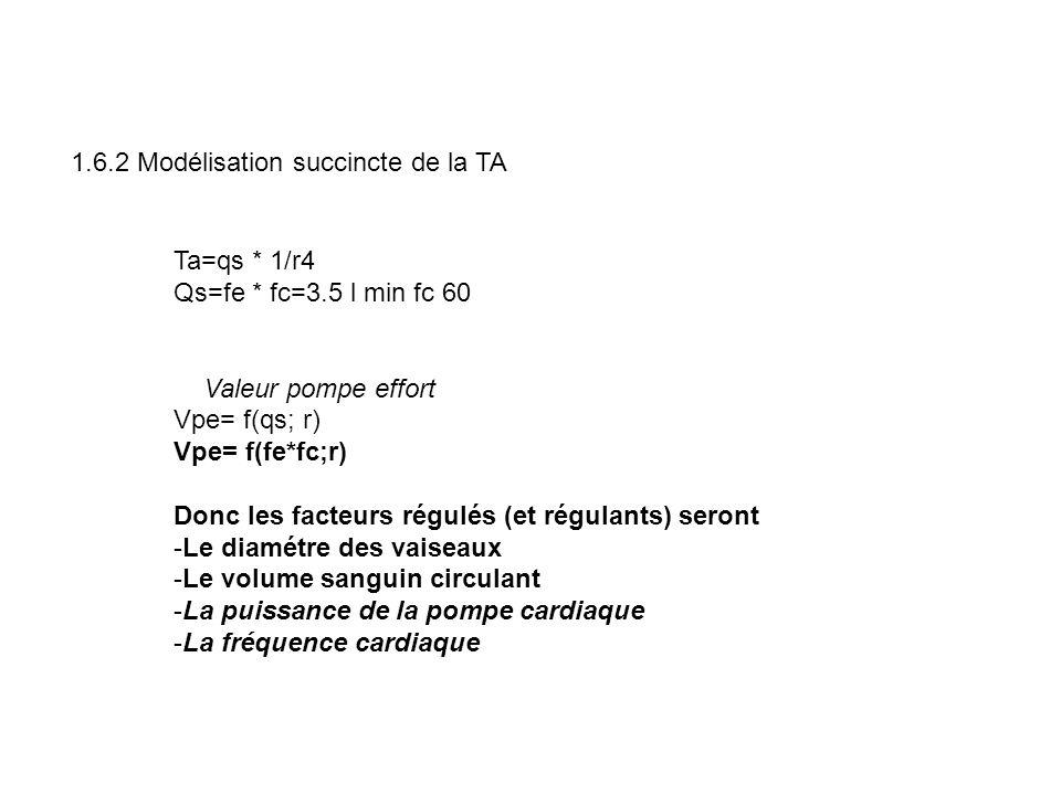 1.6.2 Modélisation succincte de la TA