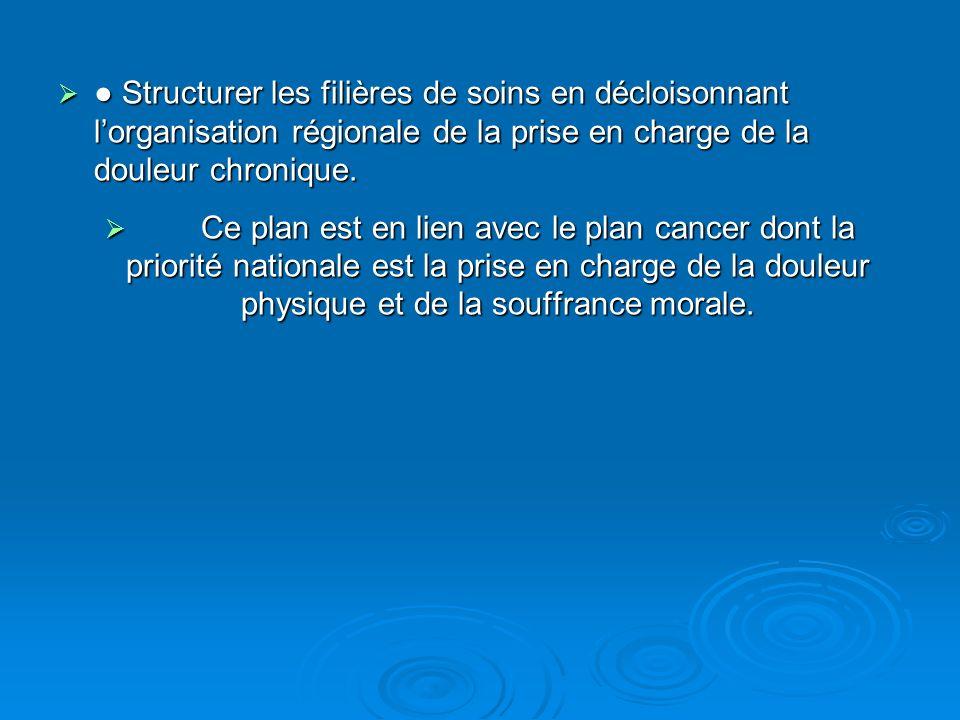 ● Structurer les filières de soins en décloisonnant l'organisation régionale de la prise en charge de la douleur chronique.