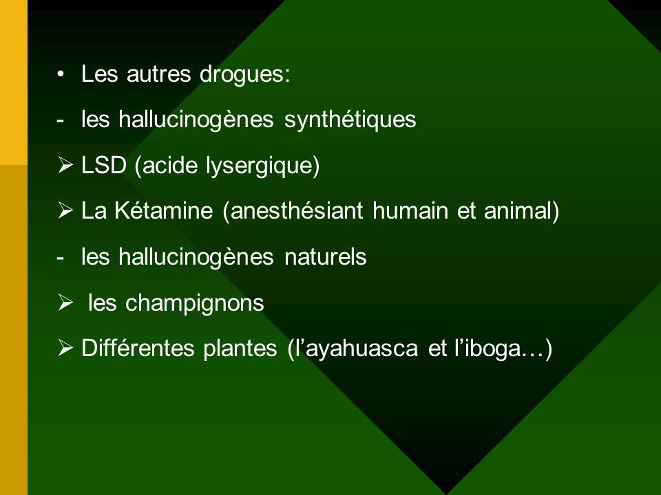 Les autres drogues: les hallucinogènes synthétiques. LSD (acide lysergique) La Kétamine (anesthésiant humain et animal)