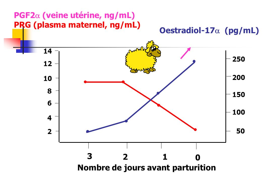 PGF2 (veine utérine, ng/mL) PRG (plasma maternel, ng/mL)